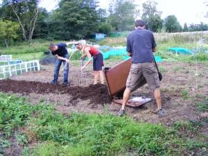 applying finished Compost fertilizer